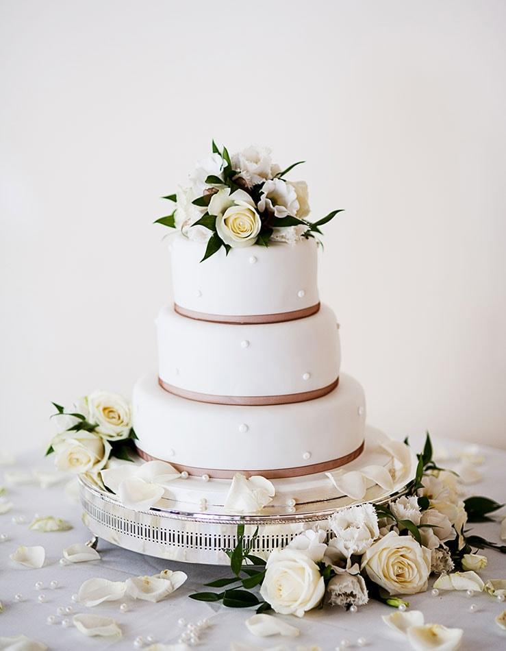das hochzeits foto hochzeitstorte demo - Hochzeitsfotos
